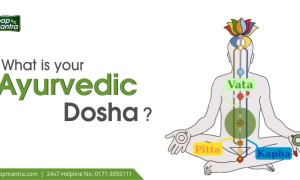 What is your Ayurvedic Dosha?