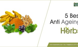 5 Best Anti Ageing Herbs