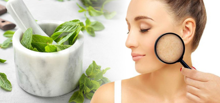 Different-Ways-to-Use-Mint-Leaves-for-Acne-and-Acne-Scars
