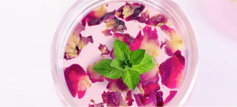 The-coolness-of-Mint-and-Rose-Water-for-Acne-and-scares-spot-removal