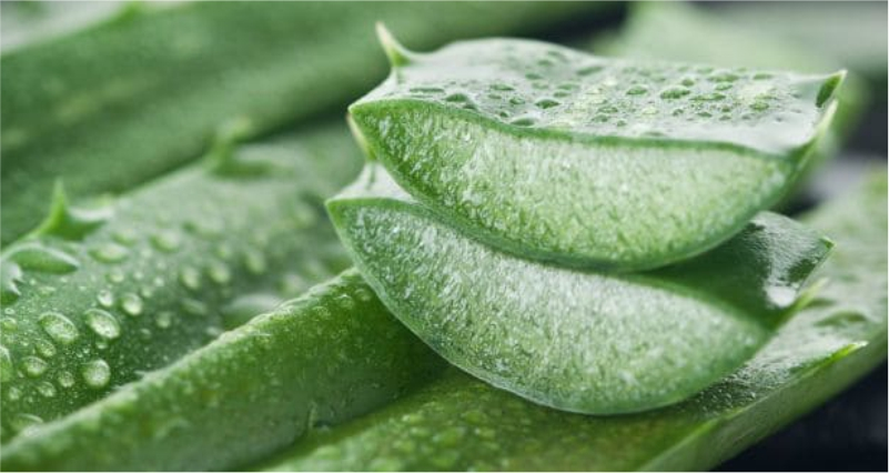 Use-Aloe-Vera-ge-to-Get-a-Wrinkle-Free-Skin-Naturally