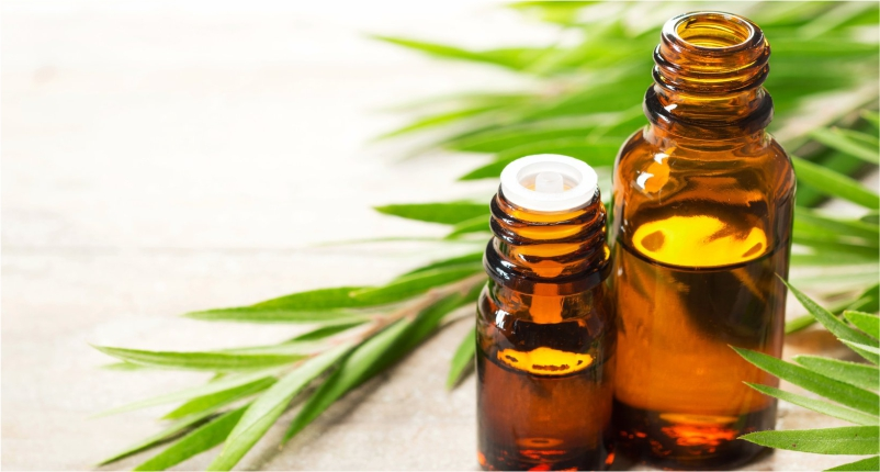 Use-Tea-Tree-Oil-to-Take-Care-of-Oily-Skin-in-winters