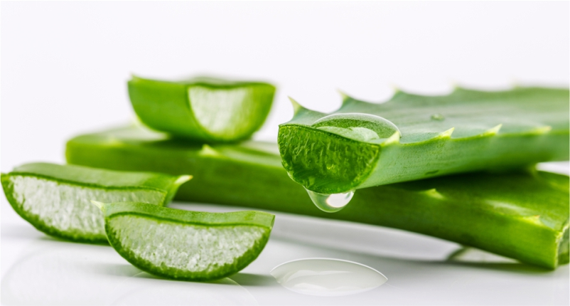 Aloe-Vera-for-Dry-Skin-to-Get-Rid-of-Dry-Skin