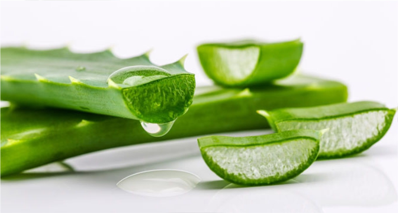 Use-Aloe-Vera–an-Excellent-Skin-Moisturizer -to-Get-Flawless-and-Glowing-Skin